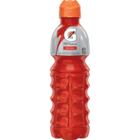 Gatorade Fruit Punch Sport 24x710ml (64855)